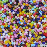 Gemengde Glass Seed Beads