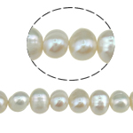 Potato Cultured Freshwater Pearl Beads, natural, white, 6-7mm, Hole:Approx 0.8mm, Sold Per 15 Inch Strand