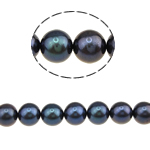 Round Cultured Freshwater Pearl Beads, natural, black, Grade AAA, 8-9mm, Hole:Approx 0.8mm, Sold Per 16 Inch Strand