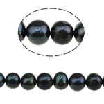 Round Cultured Freshwater Pearl Beads, natural, black, A Grade, 9-10mm, Hole:Approx 0.8mm, Approx 37PCs/Strand, Sold Per 14.5 Inch Strand