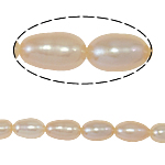 Rice Cultured Freshwater Pearl Beads, natural, pink, Grade A, 5-6mm, Hole:Approx 0.8mm, Sold Per 14.5 Inch Strand