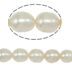 Rice Cultured Freshwater Pearl Beads, natural, white, Grade A, 6-7mm, Hole:Approx 0.8mm, Sold Per Approx 15 Inch Strand