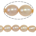 Rice Cultured Freshwater Pearl Beads, natural, pink, Grade A, 7-8mm, Hole:Approx 0.8mm, Sold Per 15 Inch Strand