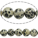 Dalmatian Beads, Round, natural, 10mm, Hole:Approx 1.5mm, Length:approx 15.5 Inch, 10Strands/Lot, Sold by Lot