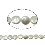 Coin Cultured Freshwater Pearl Beads, AA Grade, 10-11mm, Hole:Approx 0.8mm, Sold Per 15 Inch Strand