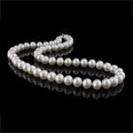 Naszyjnik z naturalnych pereł słodkowodnych, Perła naturalna słodkowodna, Mosiądz zapięcie, Koło, biały, klasy AAA, 8-9mm, sprzedawane na 17 cal Strand