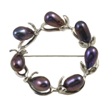 Freshwater Pearl Brooch, with Zinc Alloy, Donut, black, 7-8mm, Sold By PC