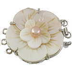 Shell Box Clasp, with Cultured Freshwater Nucleated Pearl & Brass, Flower, 3-strand, 39x33x14mm, Hole:Approx 1.5mm, Sold By PC