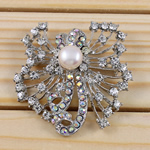 Freshwater Pearl Brooch, Rhinestone, with Freshwater Pearl & Brass, Flower, with rhinestone, silver, 55x56x17mm, Sold By PC