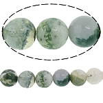 Boom Agaat kralen, Ronde, 8mm, Gat:Ca 1mm, Lengte:Ca 15 inch, 10strengen/Lot, Ca 47pC's/Strand, Verkocht door Lot