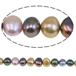 Cultured Baroque Freshwater Pearl Beads mixed colors 8-9mm Approx 0.8mm Sold Per Approx 15 Inch Strand