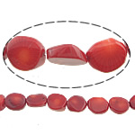 Natural Coral Beads, 15x12x5mm, Hole:Approx 0.5mm, Length:16 Inch, 10Strands/Lot, Sold by Lot