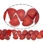 Natural Coral Beads, 20x11x5mm, Hole:Approx 0.5mm, Length:16 Inch, 10Strands/Lot, Sold by Lot