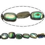 Koraliki Abalone, Muszla Abalone, Prostokąt, 7.5-9X6-8X4-5mm, otwór:około 1mm, długość:około 16 cal, 5nici/wiele, sprzedane przez wiele