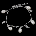 Freshwater Cultured Pearl Bracelet Freshwater Pearl with Brass brass spring ring clasp with 34mm extender chain natural white 8-9mm Length:6.5 Inch 12Strands/Bag