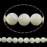 Natural Sea Shell Beads, Round, white, 8mm, Hole:Approx 0.8mm, Length:approx 15.3 Inch, 10Strands/Lot, approx48pcs/strand, Sold by Lot
