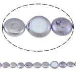 Coin Cultured Freshwater Pearl Beads, purple, 13mm, Hole:Approx 0.8mm, Sold Per Approx 15.3 Inch Strand