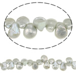 Coin Cultured Freshwater Pearl Beads, grey, 9-12mm, Hole:Approx 0.8mm, Length:Approx 15 Inch, Sold By KG