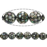 Koraliki Abalone, Muszla Abalone, Koło, Mozaika, 14mm, otwór:około 1mm, około 28komputery/Strand, sprzedawane na około 16 cal Strand