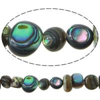 Koraliki Abalone, Muszla Abalone, 2-6.5x5-7.5x2-6.5mm, otwór:około 1mm, długość:około 16 cal, 5nici/wiele, około 102komputery/Strand, sprzedane przez wiele