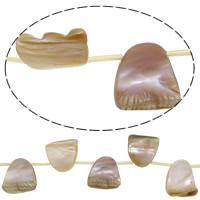Naturalnie różowa muszla - koralik, Muszla różowa, 19.5-23.5x18-24.5x6-7mm, otwór:około 1.5mm, długość:około 15.5 cal, 5nici/wiele, około 15komputery/Strand, sprzedane przez wiele