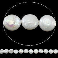 Coin Cultured Freshwater Pearl Beads, Button, natural, white, Grade AA, 12-13mm, Hole:Approx 0.8mm, Sold Per 15 Inch Strand