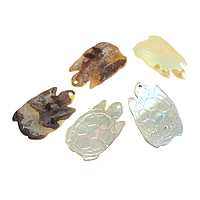 Natural Seashell Pendant, Turtle, mixed colors, 12x20x1-2.5mm, Hole:Approx 1.5mm, 300PCs/Lot, Sold By Lot