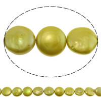 Coin Cultured Freshwater Pearl Beads, golden yellow, 13mm, Hole:Approx 0.8mm, Sold Per Approx 14.7 Inch Strand