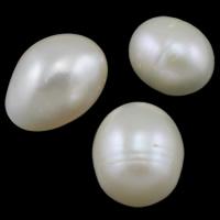 Koraliki z pereł hodowlanych słodkowodnych bez otworu, Perła naturalna słodkowodna, Ryż, Naturalne, biały, 12-15mm, 10komputery/torba, sprzedane przez torba