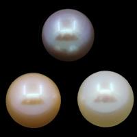 Koraliki z pereł hodowlanych słodkowodnych bez otworu, Perła naturalna słodkowodna, Koło, Naturalne, dostępnych więcej kolorów, klasy AAA, 8-9mm, sprzedane przez PC
