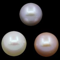 Koraliki z pereł hodowlanych słodkowodnych bez otworu, Perła naturalna słodkowodna, Koło, Naturalne, dostępnych więcej kolorów, klasy AAA, 9-10mm, sprzedane przez PC