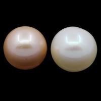 Koraliki z pereł hodowlanych słodkowodnych bez otworu, Perła naturalna słodkowodna, Koło, Naturalne, dostępnych więcej kolorów, klasy AAA, 11-12mm, sprzedane przez PC