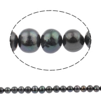 Baroque Cultured Freshwater Pearl Beads, Round, black, 10-11mm, Hole:Approx 0.8mm, Sold Per 14.5 Inch Strand