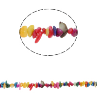 Gemstone Chips Freshwater Shell mixed colors 5-8mm Approx 0.8mm Approx Sold Per Approx 30.7 Inch Strand