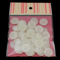 Tworzywa ABS perła Oprawa kaboszona, ze OPP, Kwiat, z płaskim tyłem, biały, 20x4mm, średnica wewnętrzna:około 4mm, 50komputery/torba, sprzedane przez torba