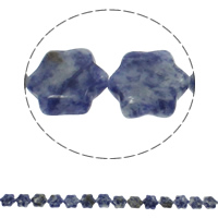 Natural Blue Spot Stone Beads, Flower, 13x15x5mm, Hole:Approx 1.5mm, Approx 28PCs/Strand, Sold Per Approx 15.7 Inch Strand