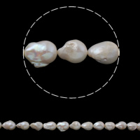 Freshwater Cultured Nucleated Pearl Beads, Cultured Freshwater Nucleated Pearl, Keishi, natural, white, 15-18mm, Hole:Approx 0.8mm, Sold Per Approx 15.3 Inch Strand