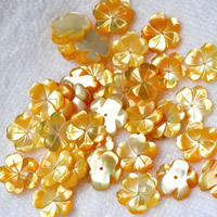 Hair Accessories DIY Findings, Yellow Shell, Flower, natural, 15mm, 10PCs/Lot, Sold By Lot