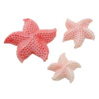 Бусины из ракушек крупных моллюсков, морское ушко, Морская звезда, резной, разный размер для выбора & чеканная, отверстие:Приблизительно 2mm, 5ПК/Лот, продается Лот