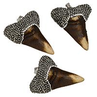 Кости вола подвеска, с клей & Латунь, Зуб, Платиновое покрытие платиновым цвет, природный, 41-44x52-54x16-17mm, отверстие:Приблизительно 5x10mm, 10ПК/Лот, продается Лот
