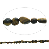Gemstone Chips, Tiger Eye, Nuggets, natural, 6mm-8x12x6mm, Hole:Approx 1mm, Approx 45PCs/Strand, Sold Per Approx 15.5 Inch Strand
