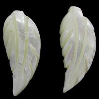 Белая ракушка кабошон, Листок, натуральный, плоской задней панелью, 11x27x5mm, продается PC