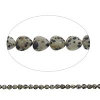 Natural Dalmatian Beads, Heart, 10x5mm, Hole:Approx 1mm, Approx 40PCs/Strand, Sold Per Approx 15.5 Inch Strand