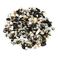 Черная ракушка кабошон, Комкообразная форма, натуральный, 3-16x4-12x3-9mm, продается KG