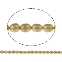 Clearance Freshwater Pearl Beads, Rice, yellow, 9-10mm, Hole:Approx 0.8mm, Sold Per Approx 15.5 Inch Strand