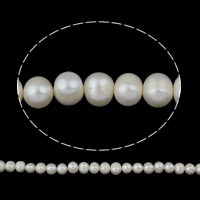 Clearance Freshwater Pearl Beads, Potato, natural, white, 10-11mm, Hole:Approx 0.8mm, Sold Per Approx 16 Inch Strand