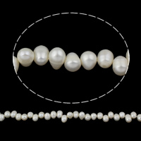 Clearance Freshwater Pearl Beads, Rice, natural, white, 10-11mm, Hole:Approx 0.8mm, Sold Per Approx 14.5 Inch Strand