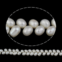 Clearance Freshwater Pearl Beads, Rice, natural, white, 7-8mm, Hole:Approx 0.8mm, Sold Per Approx 15 Inch Strand