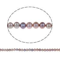 Clearance Jewelry Beads, Freshwater Pearl, Potato, natural, purple, Grade AA, 7-8mm, Hole:Approx 0.8mm, Sold Per Approx 15 Inch Strand