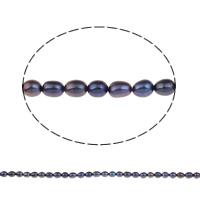 Goedkeuring zoetwater parel kralen, Rijst, purper, 5-6mm, Gat:Ca 0.8mm, Per verkocht Ca 14 inch Strand